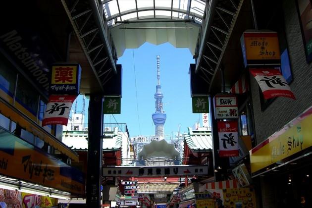 浅草寺 四万六千日 ほおずき市